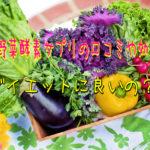 匠の野菜酵素サプリの口コミやダイエット効果は?以前との違いは?